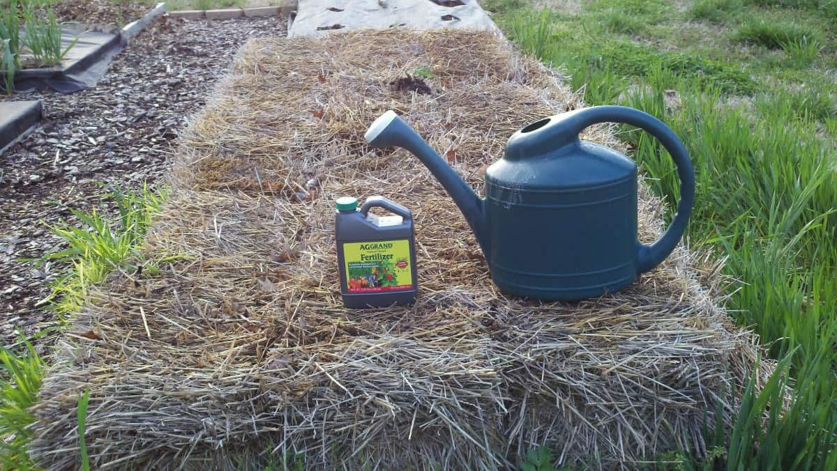 Straw Bale Gardening with AGGRAND 4-3-3
