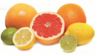 Buy Neptune's Harvest Liquid Organic Fertilizer for Citrus Trees on Amazon