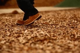 Buy Online Wiggle Worm Soil Builder Earthworm Castings Organic Fertilizer