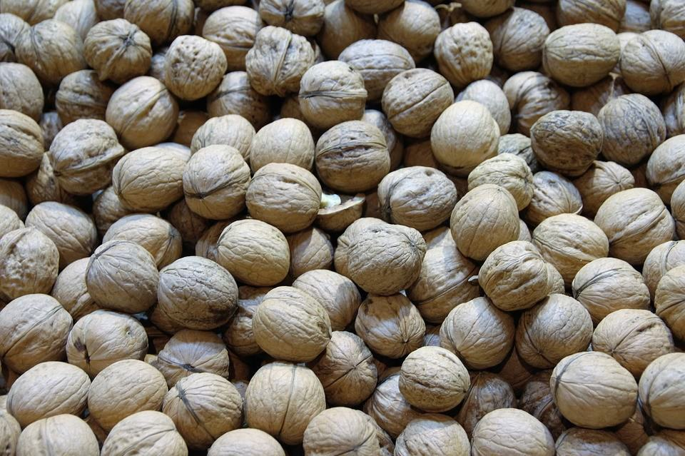 Where Can I Buy Natural Kelp Fertilizer for Walnuts