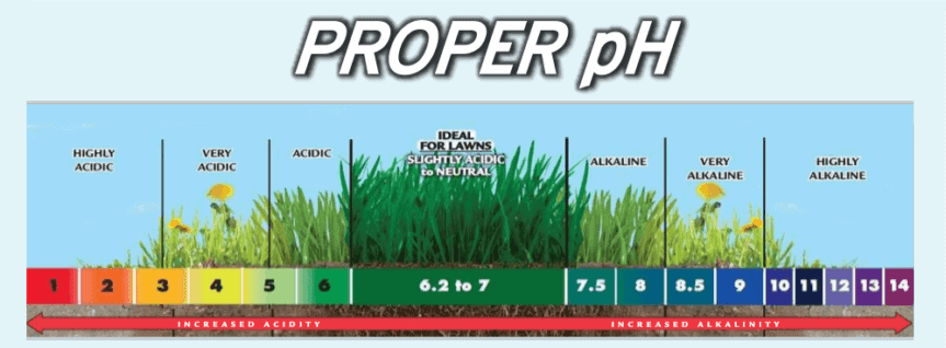 measuring the proper soil pH for lawn turf