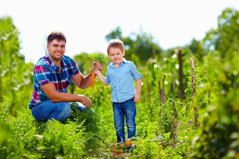 gardening creates positive vibes