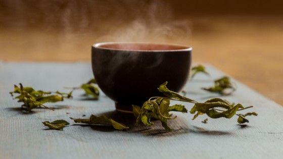 using green tea as plant fertilizer