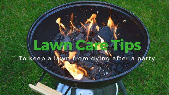 how to keep your lawn from dying after huge party