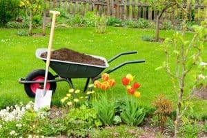 decorative gardening image