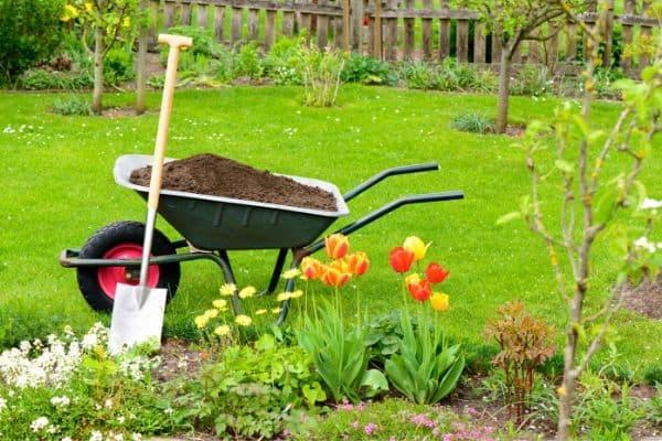 image of garden tools