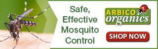 mosquito ad