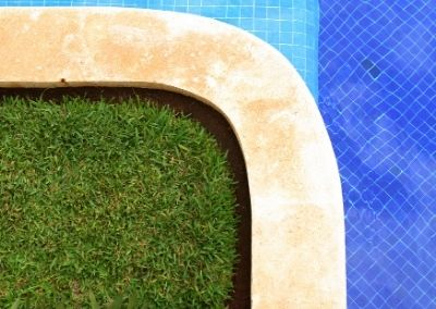 green grass growing next to a swimming pool
