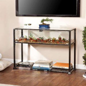 A glass terrarium that also serves as a glass table below a hanging television.