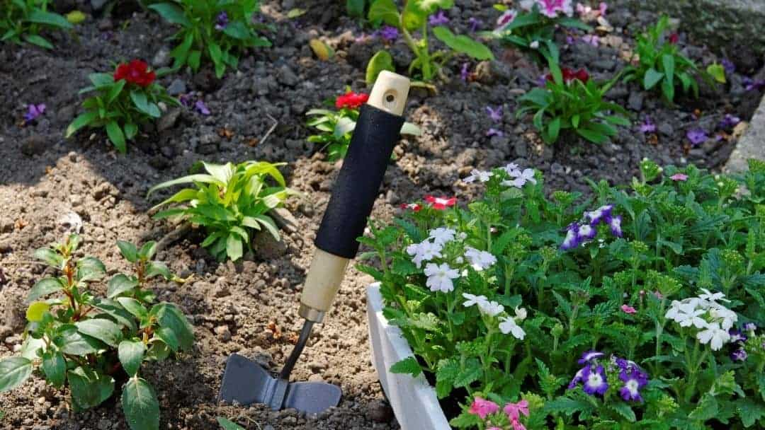 a spade in the ground - decorative image