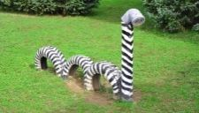 Really cool tire art made to look like a zebra.